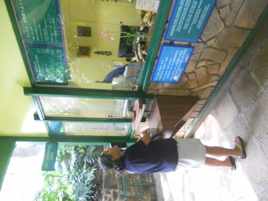 Foster Botanical Gardens: entry