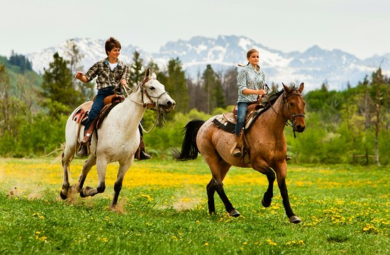 Clark, CO: Riding at The Home Ranch