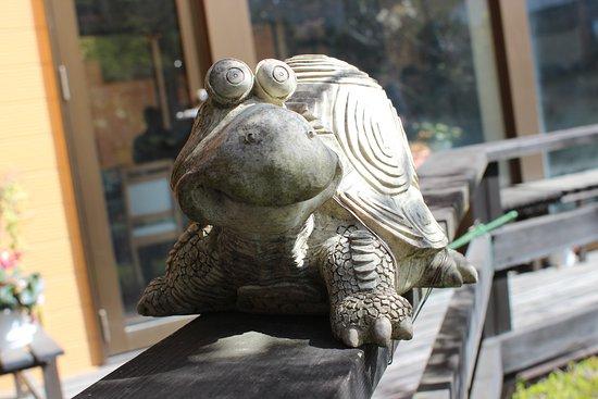 เทอร์เทิลอินน์ นิกโก: Turtle Inn Nikko