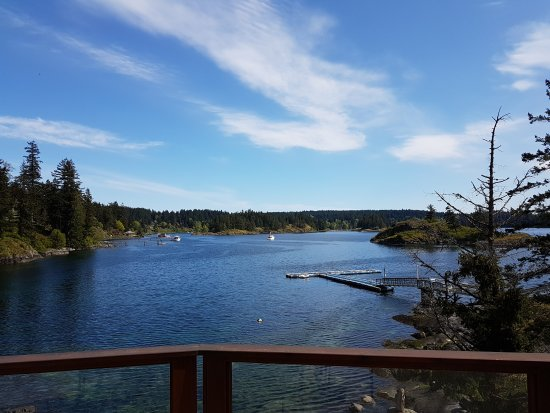 Quadra Island, แคนาดา: IMG_20170507_150958_large.jpg