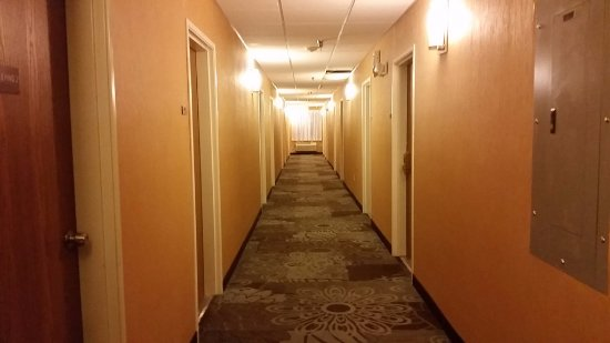 Quality Inn & Suites Denver International Airport Photo