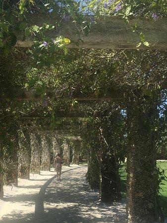 Naples Botanical Garden: Great photos