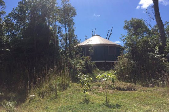 Volcán, Hawái: Yoga studio in a beautiful new yurt in the forest