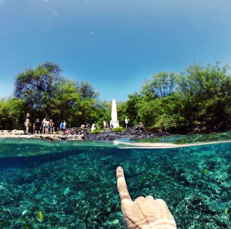 Fair Wind Big Island Ocean Guides: photo0.jpg