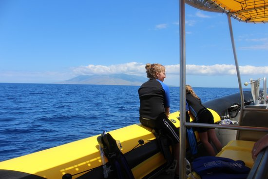 034101a0b270 Solitude in the ocean - Picture of Maui Snorkel Charters, Kihei ...