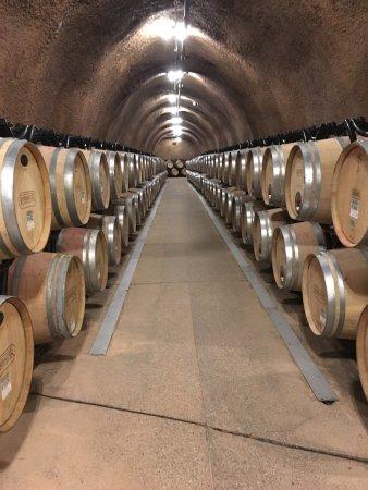 Rombauer Vineyards : photo5.jpg