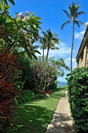 Kihei Kai Oceanfront Condos: Kihei Kai's walkway to the beach