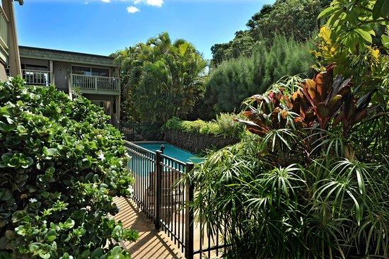 Kihei Kai Oceanfront Condos: Garden view of the pool at Kihei Kai