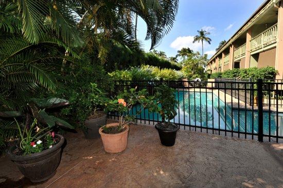 Kihei Kai Oceanfront Condos: Kihei Kai's entryway and pool view