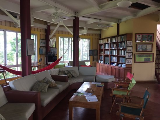 Canopy Tower: Lounge and library