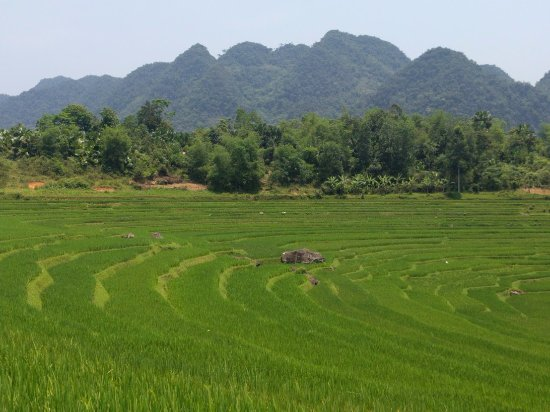 Zoom Zoom Let's Go to the Countryside - Day Tours: Pu Luong