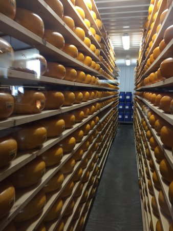 Marieke Gouda Holland's Family Cheese: photo0.jpg