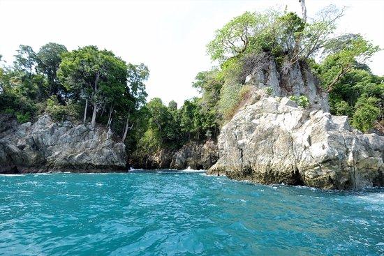 Copa de Arbol Beach and Rainforest Resort: Boat trip to Corcovado national park