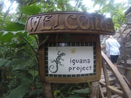 San Ignacio Resort Hotel: photo1.jpg