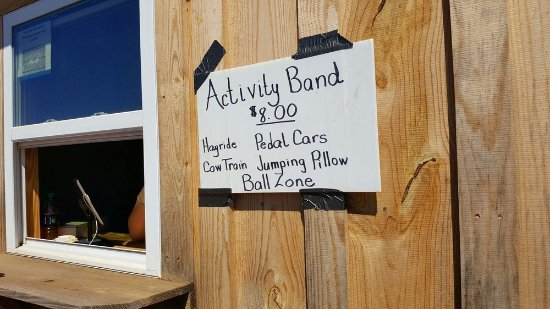 McDonough, GA: activities on farm