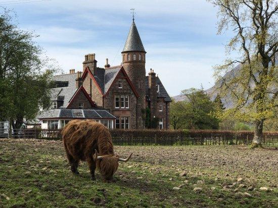 The Torridon Inn: photo2.jpg