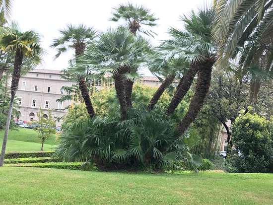 Jardines vaticanos picture of vatican gardens vatican for Jardines vaticanos
