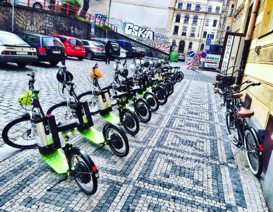How to Start a Moped Business