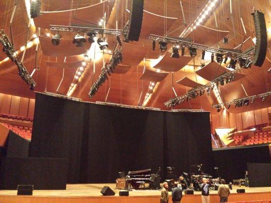 Sala santa cecilia picture of auditorium parco della for Auditorium parco della musica sala santa cecilia