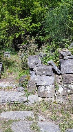 Farnese, إيطاليا: particolari 