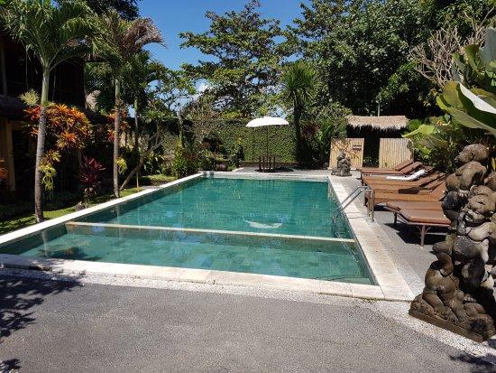 Ubud View Bungalows: La piscine ( vue du coin repas)