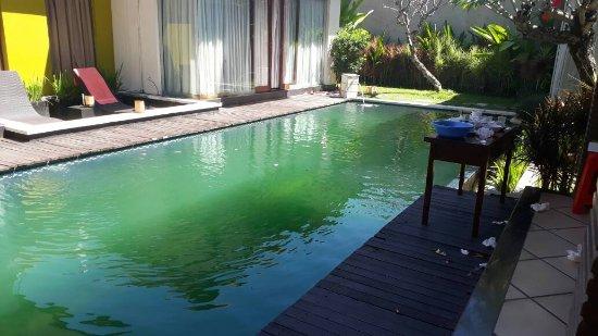 Bali Swiss Villa: IMG-20170509-WA0004_large.jpg