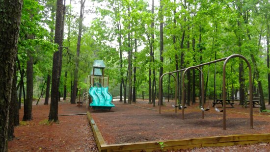 Little Pee Dee State Park: Playground