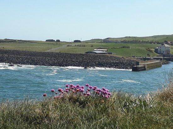 Beautiful Eyemouth coast