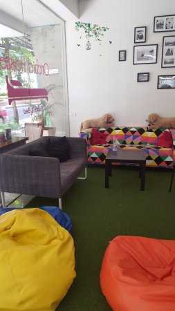 Orchid Hostel: Lobby