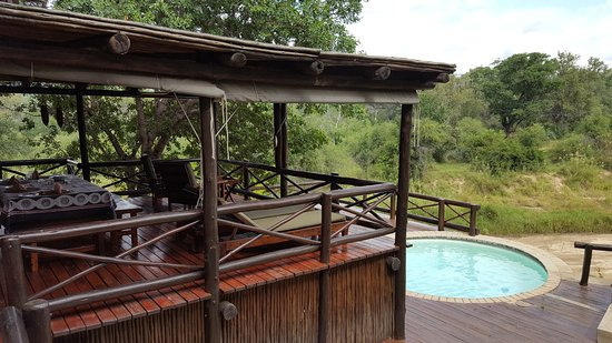 ‪‪Indlovu River Lodge‬: Private pool and sundeck‬