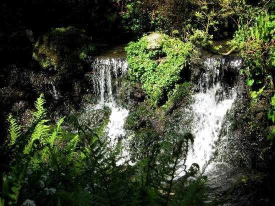 Minterne Gardens: Waterfalls in lower gardens