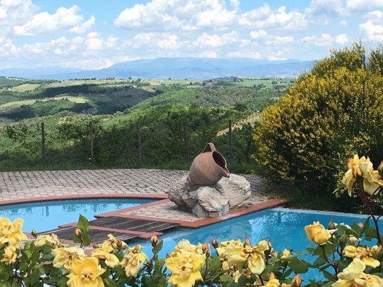 San Venanzo, Italy: Piscina estiva  panoramica