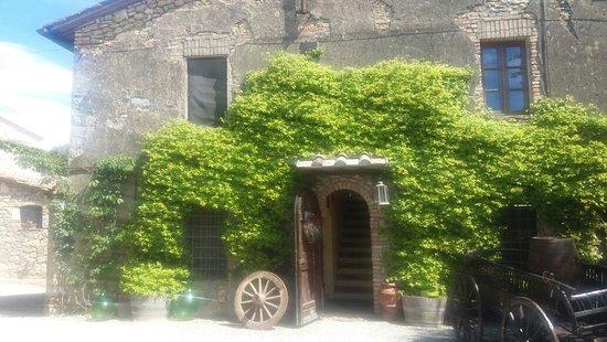 Fattoria San Donato: IMG-20170501-WA0042_large.jpg
