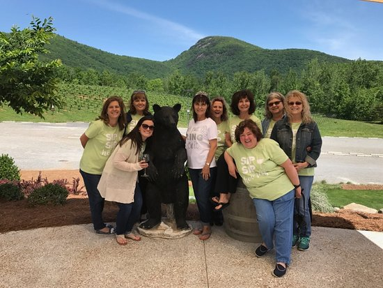 Sautee Nacoochee, Georgien: Our group at Yonah Mountain Winery