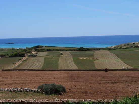 Finca Atalis: Wunderschöne Tiere und wunderschöne Landschaft