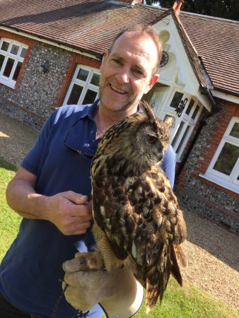 West Sussex Falconry: photo2.jpg