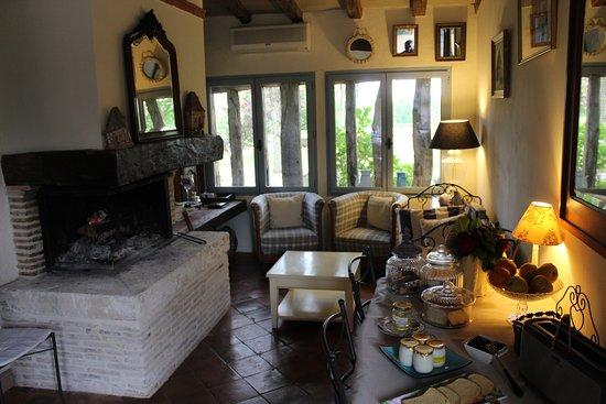 Saint-Remy, France: coin du feu dans la salle du petit déjeuner