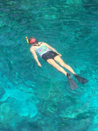 Fair Wind Big Island Ocean Guides: snorkeling