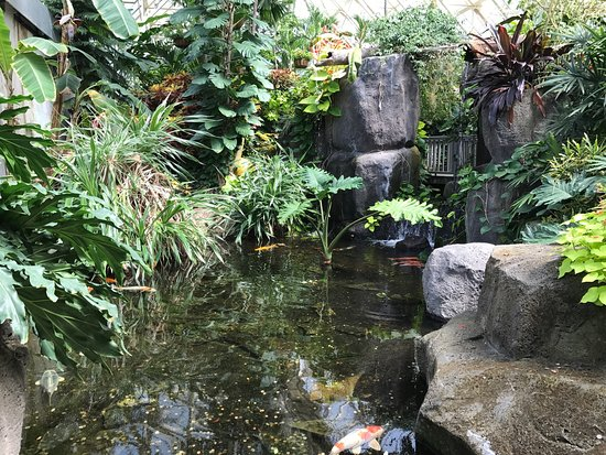 Franklin Park Conservatory and Botanical Gardens: photo6.jpg