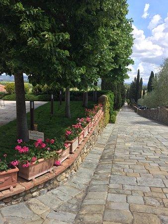 Poggio alle Mura, Italy: photo2.jpg