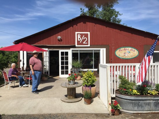 Oakdale, CA: Very enjoyable stop! Great bakery! Beautiful setting among walnut as almond trees. Just getting