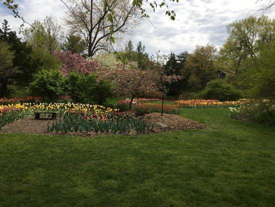 Dow Gardens Picture Of Dow Gardens Midland Tripadvisor