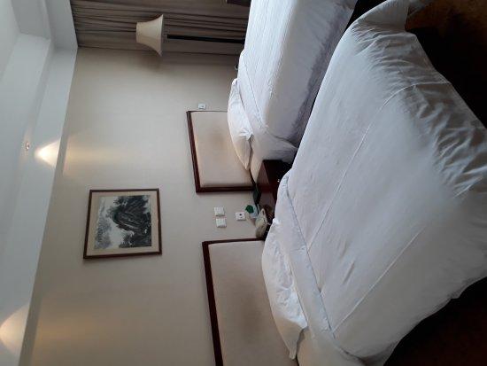E Mei Shan Hot Spring Hotel : 20170510_154754_large.jpg