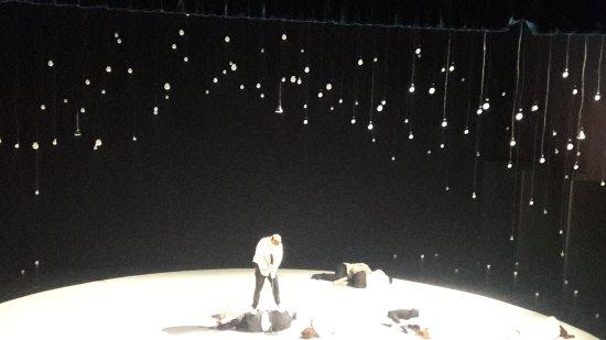מרכז סוזן דלל: דוגמא למופע