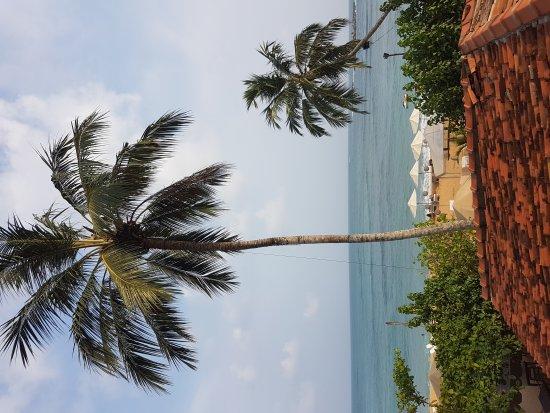 Thaproban Beach House: 20170406_161753_large.jpg