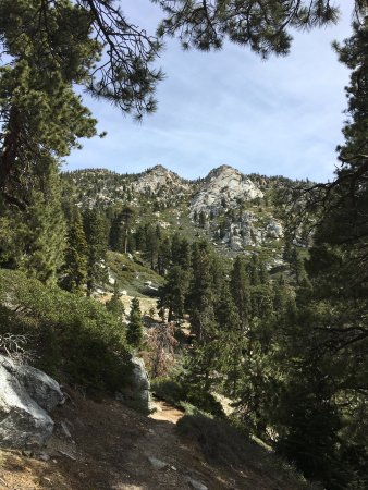Idyllwild, CA: Views along the trail