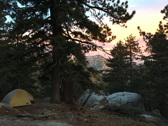 Idyllwild, Californië: Camping at Strawberry junction