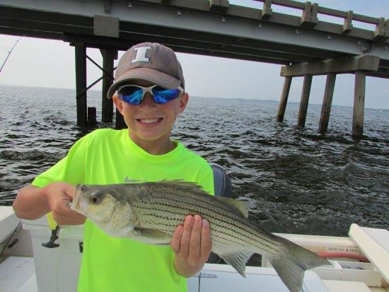 Manteo, Carolina del Norte: Striped Bass!
