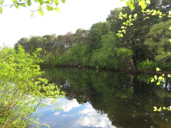 Millville, NJ: Wheaton Arts Pond