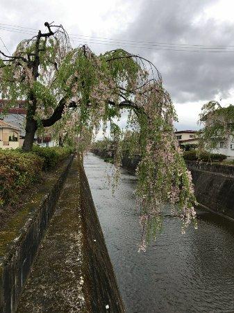 Kuratsu River